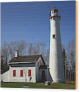 Lighthouse - Sturgeon Point Michigan Wood Print