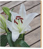 Lily Casa Blanca 1 Wood Print