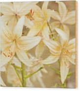 Lilycrest Dainties Wood Print
