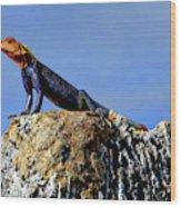 Lizard Lips Wood Print