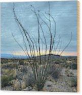 Lone Bush - Sunrise Wood Print