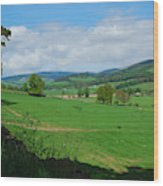 looking westwards in Tweed valley Wood Print