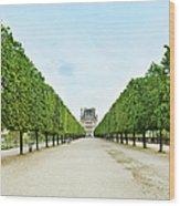 Louvre In  Paris Wood Print