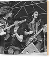 Lynyrd Skynyrd Performs Live Wood Print