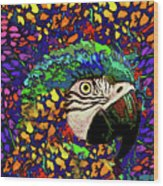 Macaw High II Wood Print
