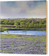 Mach Road Blubonnet Panorama In Evening Light Wood Print