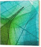 Macro Leaves Background Texture Wood Print
