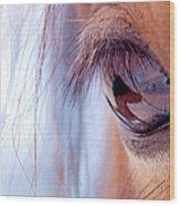 Macro Of Horse Eye Wood Print