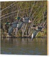 Mallards Flying By Wood Print