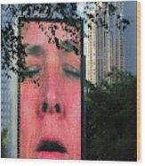 Man Face Crown Fountain Chicago Wood Print
