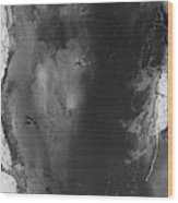Manistee River Aerial Black And White Panorama Wood Print