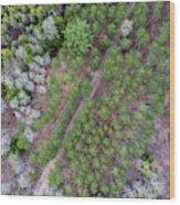 Manistee River Aerial Wood Print