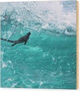 Marine Iguana Surfing Wave Wood Print