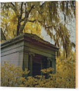Mausoleum In Georgia  Wood Print