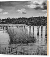 Mccormack's Beach Provincial Park, Black And White Wood Print