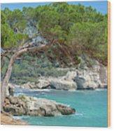 Mediterranean Landscape In Menorca Wood Print