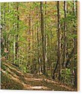 Meigs Creek Trailhead In Smoky Mountains National Park Wood Print