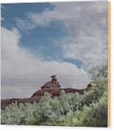 Mexican Hat From San Juan Wood Print