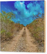 Middle Caicos Rocky Road Wood Print