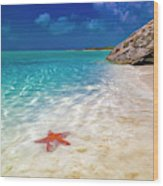Middle Caicos Tranquility Awaits Wood Print