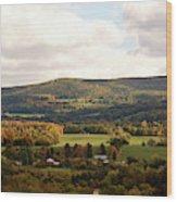Middleburg In New York Wood Print