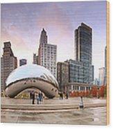 Millennium Park, Chicago, Illinois,usa Wood Print