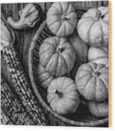 Mimi Pumpkins In Wicker Bowl Black And White Wood Print