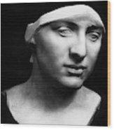 Minerva Without Helmet, 1896 Wood Print