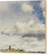 Minimal Mountaintop Meadow Wood Print