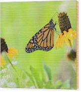 Monarch On Wildflowers Wood Print
