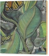 Monarch Series I Wood Print