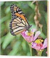 Monarch's Stance... Wood Print