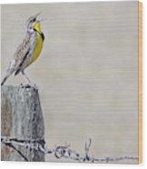 Montana Meadowlark's Spring Song Wood Print
