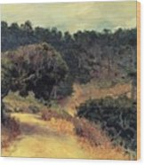 Monterey Forest 1919 Wood Print