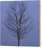 Moody Blue November Day Wood Print