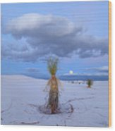 Moon And Soaptree Yucca, White Sands Wood Print