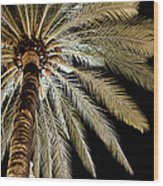 Moon Through Palm Tree Wood Print