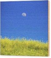 Moonfield Wood Print