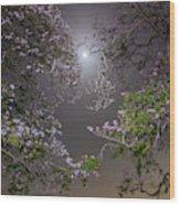 Moonlight And Magic Wood Print