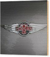 Morgan 3 Hood Ornament Wood Print