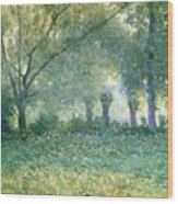 Morning Mist Also Known As Late Spring Wood Print