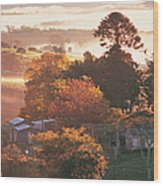 Morning Mist Over South Coast Farmland Wood Print