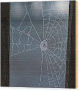 Morning Spider Web Wood Print