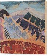 Mosaic Canigou Wood Print