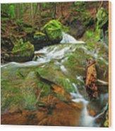 Mossy Glen Rollers Wood Print