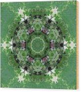 Mossy Green Wood Print