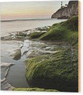 Mossy Rocks At Pismo Beach Wood Print