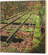 Mossy Train Track In Fall Wood Print