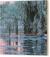 Mother Willow Infrared Wood Print
