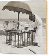 Mother With Toddler In Playpen On Beach Wood Print